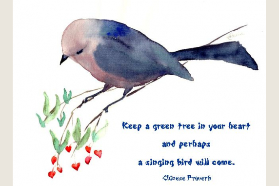 Bushtit with quote