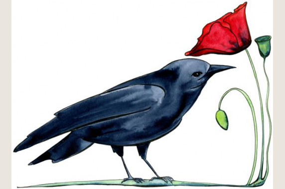 Crow and Poppy
