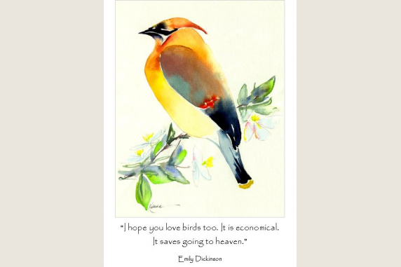 Cedar Waxwing with quote