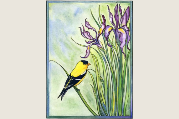 Wild Iris and Goldfinch Note Card