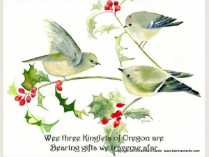 Wee Three Kinglets of Oregon Are note card set