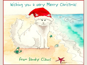 Sandy Claws Christmas Card