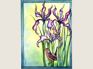 Wild Iris and Marsh Wren NoteCard Gift Set